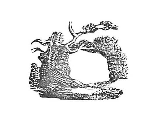 Wood engraving by Thomas Bewick.